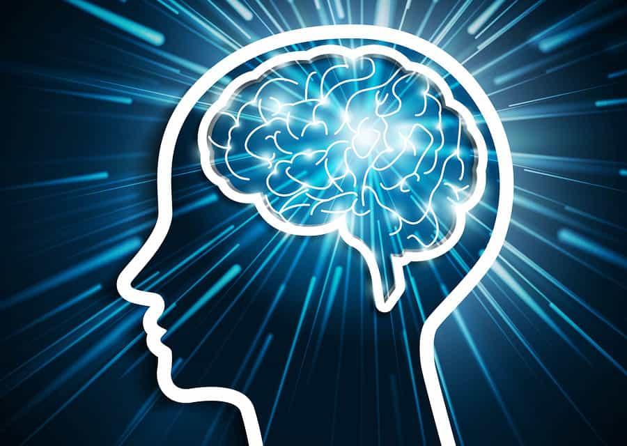 Hoe onze hersenen stress veroorzaken